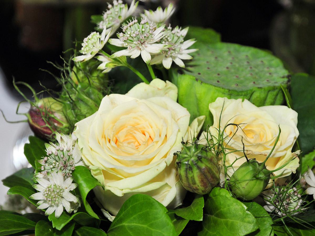 Sie stehen für Wärme, Fürsorge, Treue: gelbe Rosen.