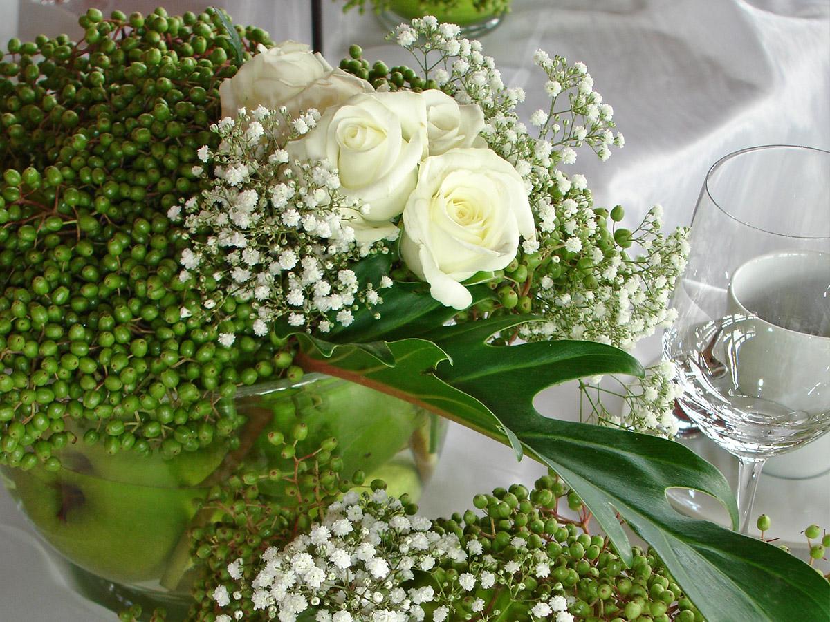 Weiße Rosen – Symbole für Reinheit, Treue und Unschuld.
